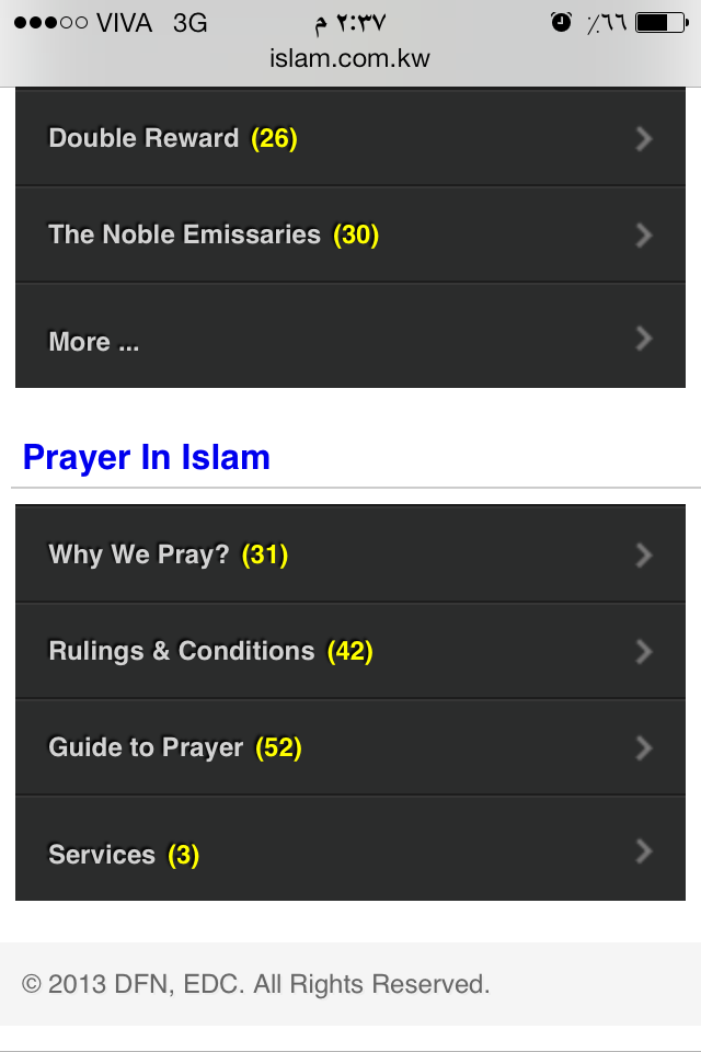 Browsing by mobile: Islam Beyond Borders 2